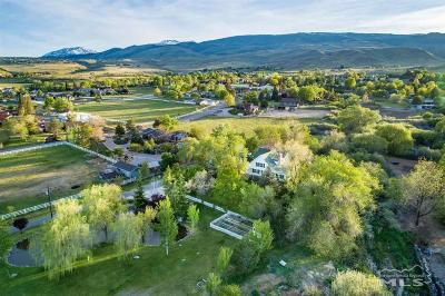Washoe County Single Family Home For Sale: 8451 Lakeside Drive