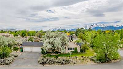 Reno Single Family Home New: 1650 Star Way