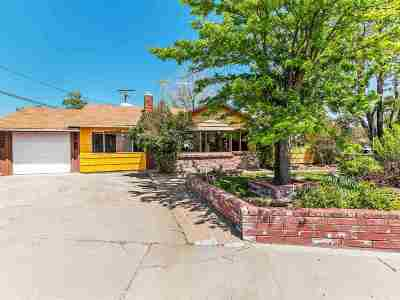 Carson City Single Family Home For Sale: 1801 Marian Avenue