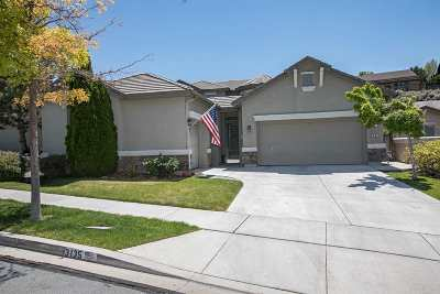 Sparks Single Family Home For Sale: 3135 Ten Mile Drive