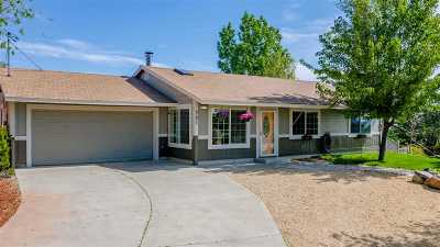 Reno Single Family Home For Sale: 301 Hoge Road
