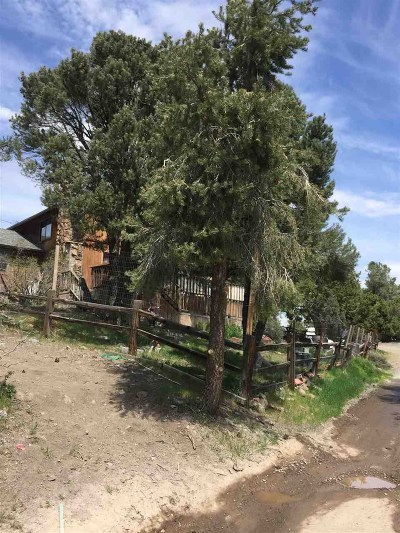 Virginia City Single Family Home For Sale: 2354 Cartwright Rd.