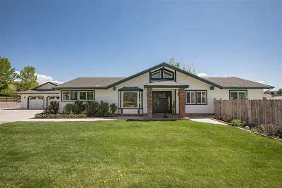 Carson City Single Family Home Active/Pending-Call: 3431 Alpine View Court