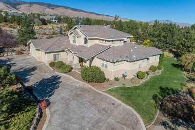 Reno Single Family Home For Sale: 4800 S Saddlehorn Drive