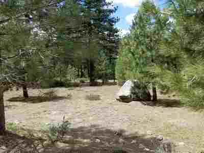 Reno Residential Lots & Land For Sale: 950 Blue Spruce Road