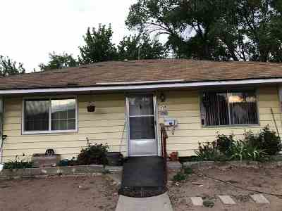 Sparks Single Family Home For Sale: 304 L Street