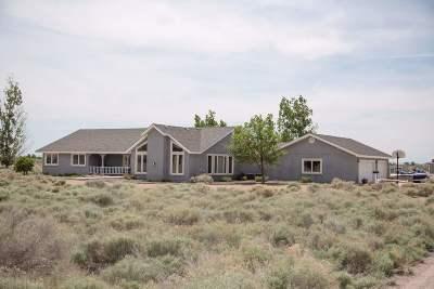 Fallon Single Family Home For Sale: 4133 Rancheria Rd