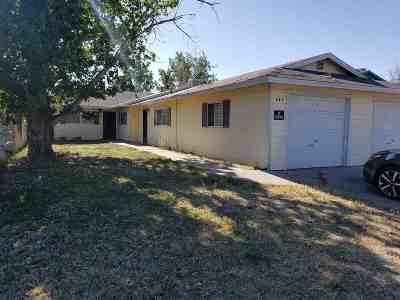 Fallon Multi Family Home For Sale: 443 445 N Taylor St