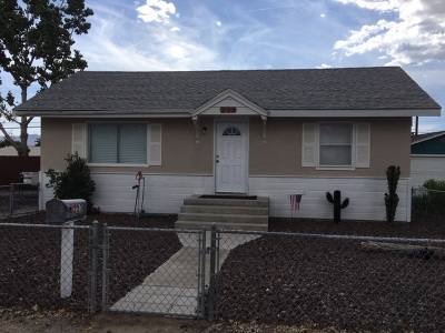 Yerington Single Family Home For Sale: 223 Valley Drive