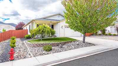Reno Single Family Home For Sale: 17441 Desert Lake Drive
