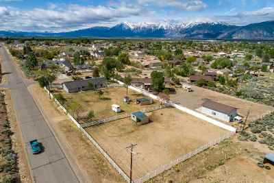 Gardnerville, Minden Single Family Home For Sale: 1596 Jones Street