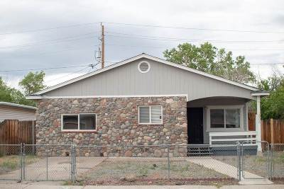Reno Single Family Home New: 1905 Hillboro