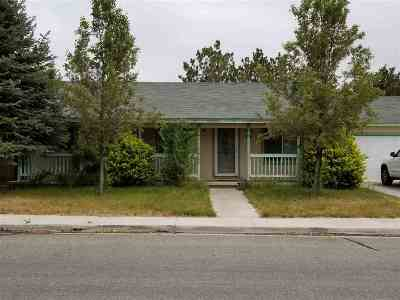 Yerington Single Family Home Active/Pending-Loan: 304 Kathy