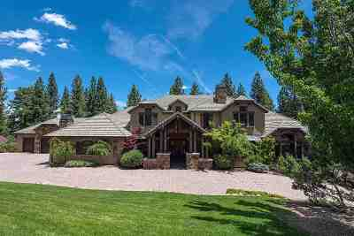 Reno Single Family Home For Sale: 255 Timbercreek Court