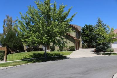 Single Family Home New: 6583 Rey Del Sierra Ct