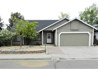 Carson City Single Family Home For Sale: 367 Sunwood