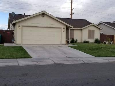 Fernley Single Family Home For Sale: 583 Spur