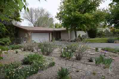 Gardnerville Single Family Home For Sale: 1912 Arabian