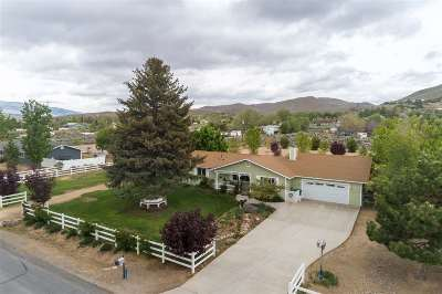 Washoe Valley Single Family Home New: 4105 Partridge Lane