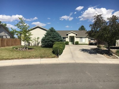 Fernley Single Family Home New: 163 Shadow Mountain