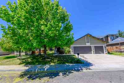 Reno Single Family Home New: 1659 Shadow Park Dr