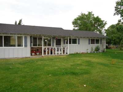Gardnerville Single Family Home New: 980 Dresslerville Road