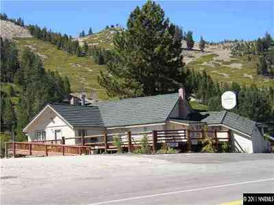 Reno Commercial For Sale: 11000 Mount Rose Highway