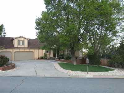 Washoe County Single Family Home New: 2855 Parkway Drive