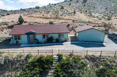 Reno Single Family Home New: 16250 Fetlock Dr