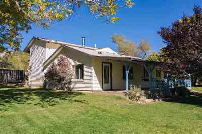 Washoe Valley Single Family Home Active/Pending-Loan: 101 Todd Ct.