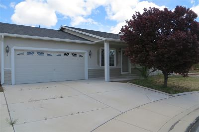 Reno Single Family Home New: 18192 Pin Oak Ct