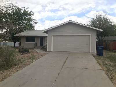Fernley Single Family Home New: 361 Shadow Lane