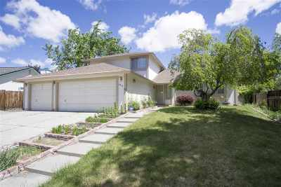 Washoe County Single Family Home New: 6470 Stone Valley
