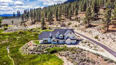 Gardnerville Single Family Home Active/Pending-Loan: 542 Jackson Ranch Road