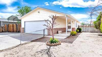 Fernley Single Family Home New: 130 Comstock Drive
