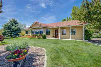 Gardnerville, Minden Single Family Home New: 1662 Buckeye Rd