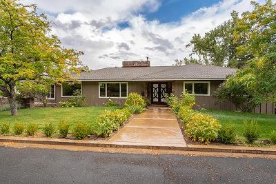 Reno Single Family Home New: 2060 Skyline Blvd