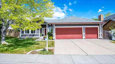 Reno Single Family Home New: 1670 Shadow Park Drive