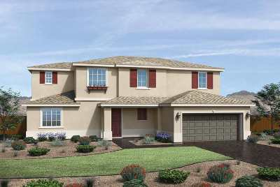 Sparks NV Single Family Home New: $545,995