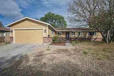 Carson City Single Family Home New: 1323 La Loma Drive