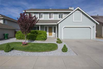 Carson City Single Family Home New: 271 Windtree Circle