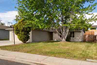 Reno NV Single Family Home New: $329,000