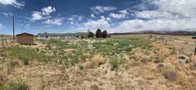 Silver Springs NV Commercial For Sale: $800,000