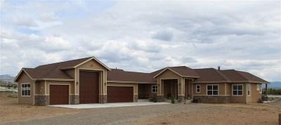 Gardnerville Single Family Home New: 1200 Golden Eagle Court