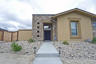 Fernley Single Family Home For Sale: 696 Raptor Way
