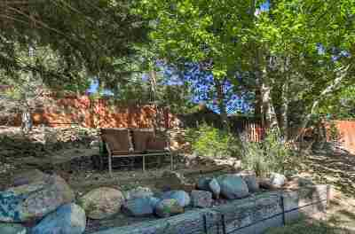 Reno, Sparks, Carson City, Gardnerville Single Family Home New: 1394 Ambassador Drive
