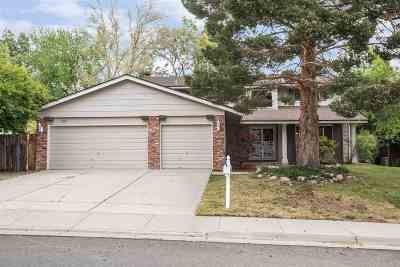 Reno Single Family Home New: 885 Twin Pines Road
