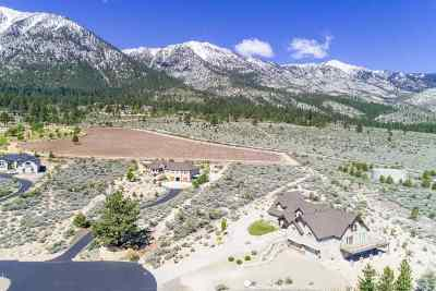 Gardnerville Residential Lots & Land For Sale: 896 Whispering Pine Court