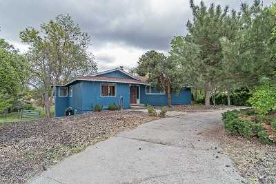 Reno Single Family Home For Sale: 4325 Ross Dr