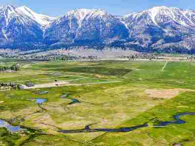 Gardnerville Residential Lots & Land Active/Pending-Call: 1169 Mottsville Meadows Way